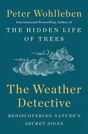 weather detective US