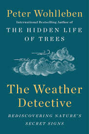 weather detective US